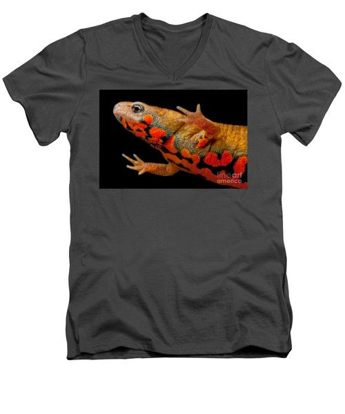 Chuxiong Fire Belly Newt Men's V-Neck T-Shirt by Dant� Fenolio