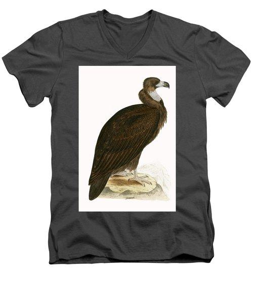 Cinereous Vulture Men's V-Neck T-Shirt by English School