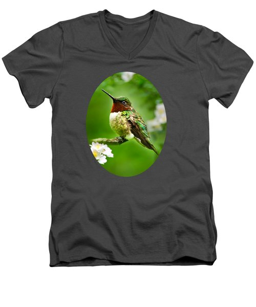 Fauna And Flora - Hummingbird With Flowers Men's V-Neck T-Shirt by Christina Rollo