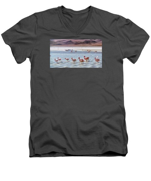 Flamingos Men's V-Neck T-Shirt by Sandy Taylor