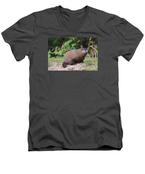 Groundhog  0590 Men's V-Neck T-Shirt by Jack Schultz