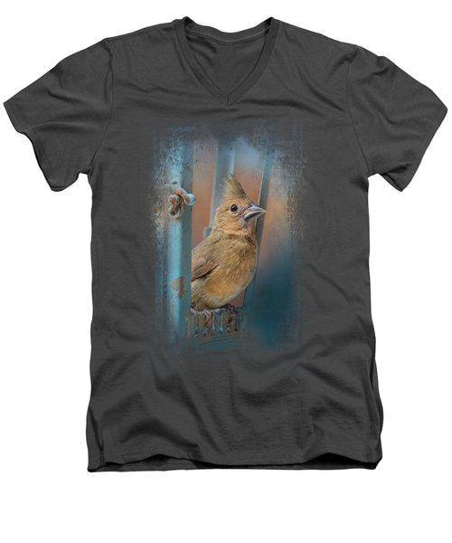 I Will Be Your Light Men's V-Neck T-Shirt by Jai Johnson