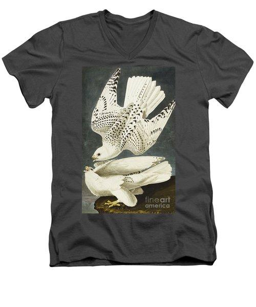 Iceland Or Jer Falcon Men's V-Neck T-Shirt by John James Audubon