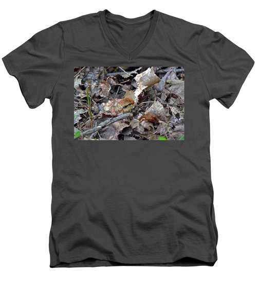 It's A Baby Grouse Men's V-Neck T-Shirt by Asbed Iskedjian