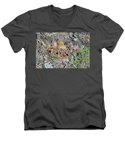 Just Hatched American Woodcock Chicks Men's V-Neck T-Shirt by Asbed Iskedjian