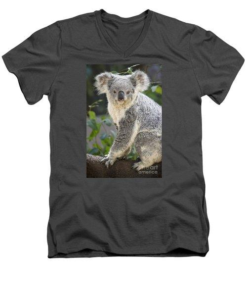 Koala Female Portrait Men's V-Neck T-Shirt by Jamie Pham