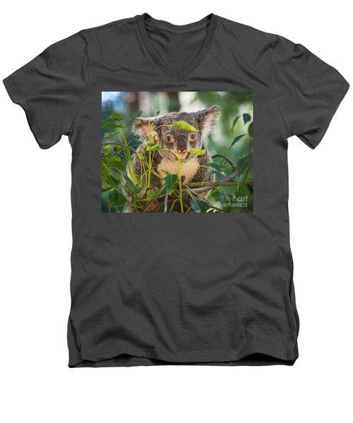 Koala Leaves Men's V-Neck T-Shirt by Jamie Pham
