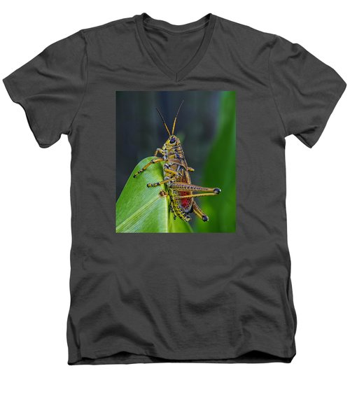 Lubber Grasshopper Men's V-Neck T-Shirt by Richard Rizzo