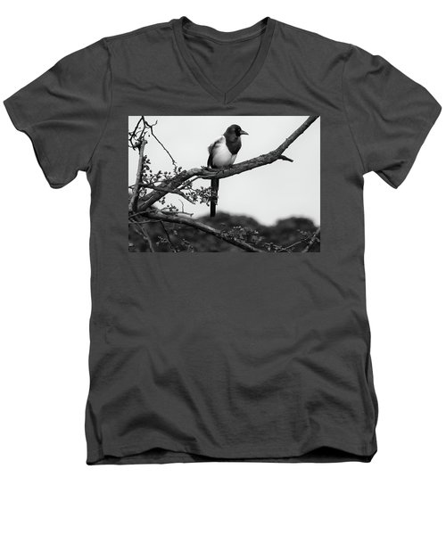 Magpie  Men's V-Neck T-Shirt by Philip Openshaw