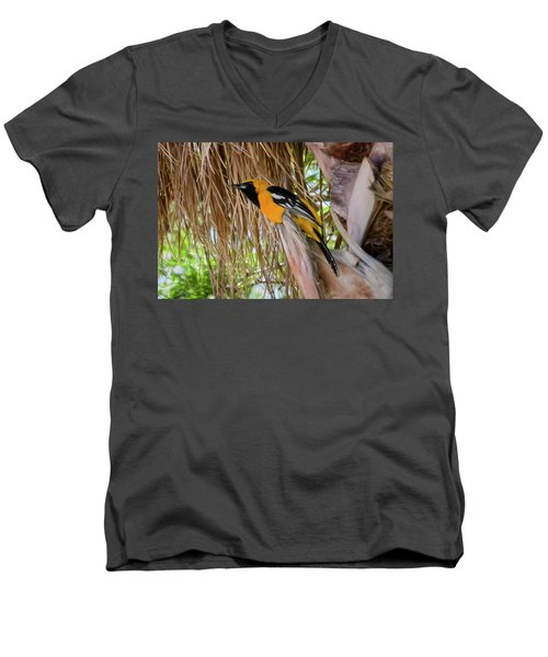 Male Hooded Oriole H17 Men's V-Neck T-Shirt by Mark Myhaver
