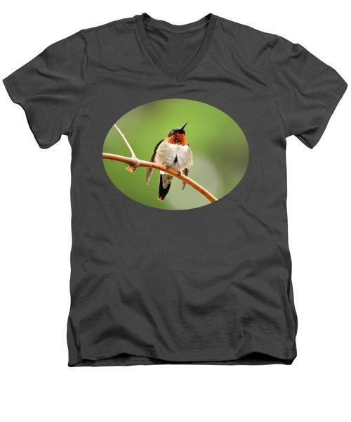 Male Ruby-throated Hummingbird Men's V-Neck T-Shirt by Christina Rollo