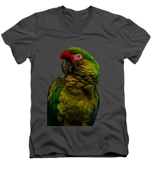 Military Macaw Men's V-Neck T-Shirt by Zina Stromberg