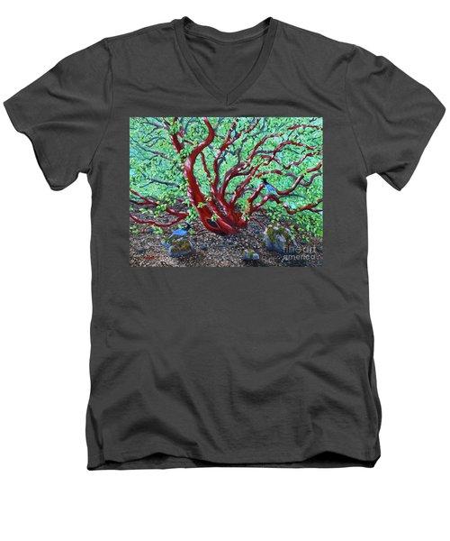 Morning Manzanita Men's V-Neck T-Shirt by Laura Iverson