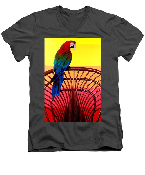 Parrot Sitting On Chair Men's V-Neck T-Shirt by Garry Gay