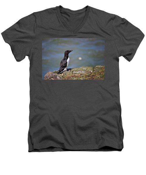 Razorbill Men's V-Neck T-Shirt by Vicki Field