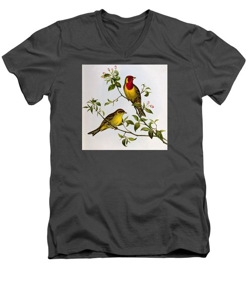 Red Headed Bunting Men's V-Neck T-Shirt by John Gould