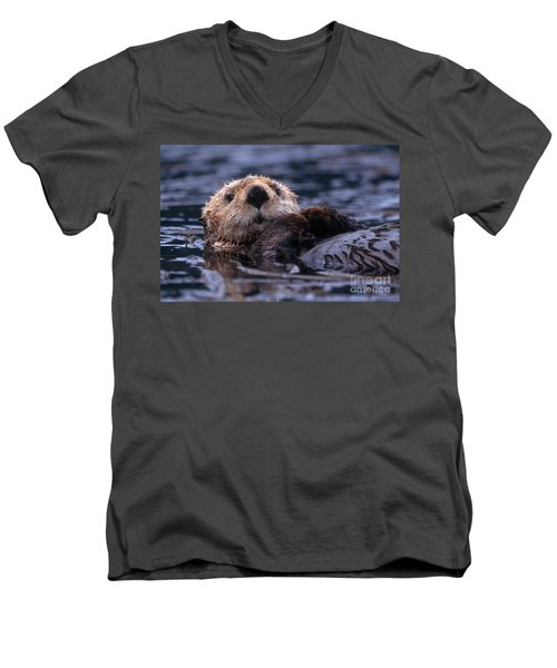 Sea Otter Men's V-Neck T-Shirt by Yva Momatiuk and John Eastcott and Photo Researchers