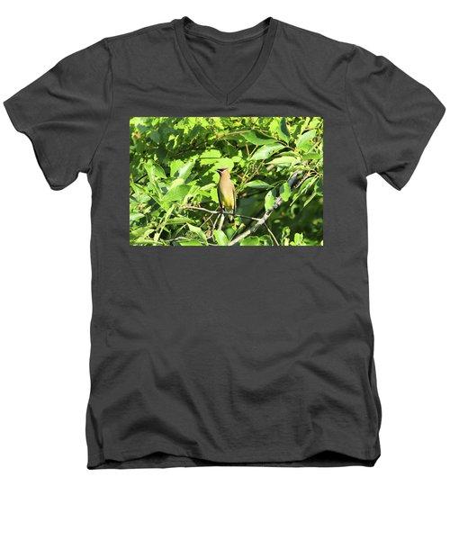 Sitting Pretty Men's V-Neck T-Shirt by David Stasiak