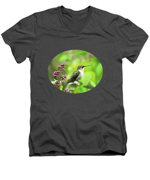Spring Beauty Ruby Throat Hummingbird Men's V-Neck T-Shirt by Christina Rollo