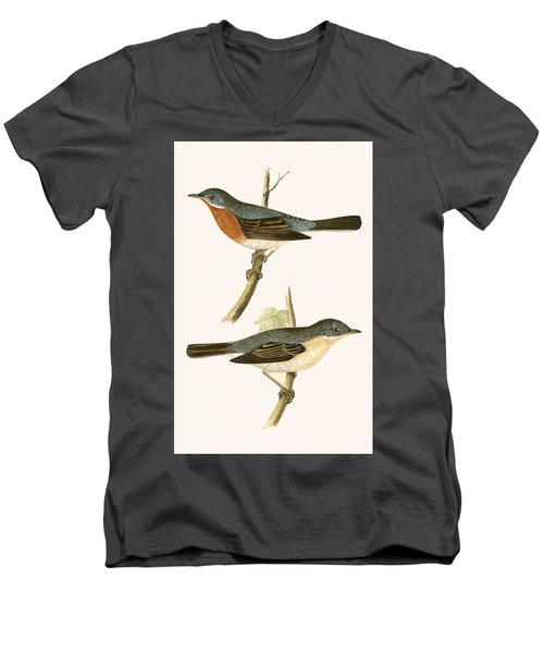 Sub Alpine Warbler Men's V-Neck T-Shirt by English School