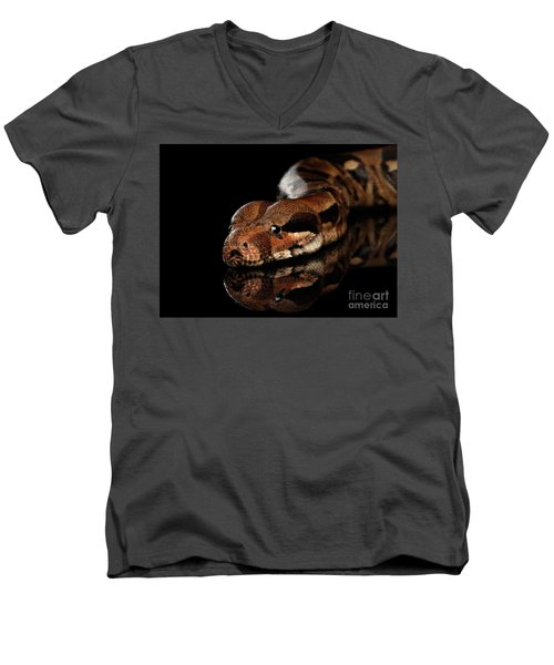 The Boa Constrictors, Isolated On Black Background Men's V-Neck T-Shirt by Sergey Taran