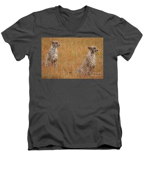 The Cheetahs Men's V-Neck T-Shirt by Stephen Smith