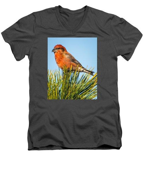 Tree Top Men's V-Neck T-Shirt by John Crookes
