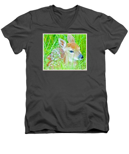 Men's V-Neck T-Shirt featuring the photograph Whitetailed Deer Fawn by A Gurmankin