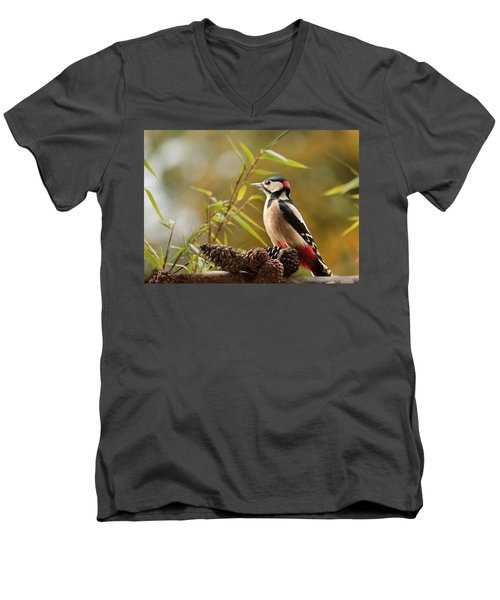 Woodpecker 3 Men's V-Neck T-Shirt by Heike Hultsch