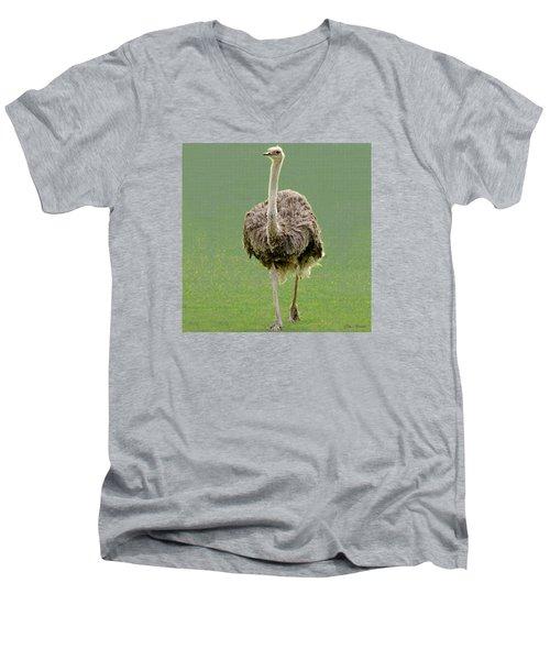 Emu Men's V-Neck T-Shirt by Ellen Henneke