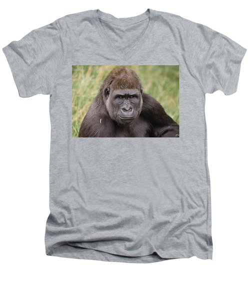Western Lowland Gorilla Young Male Men's V-Neck T-Shirt by Gerry Ellis