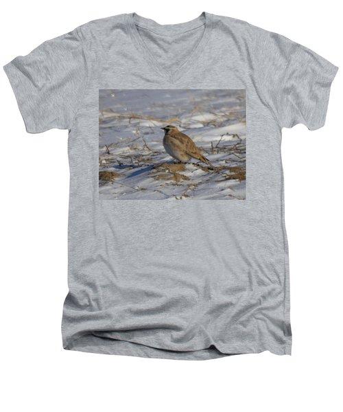 Winter Bird Men's V-Neck T-Shirt by Jeff Swan