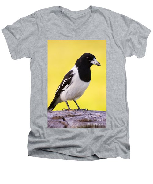 Fencepost Magpie Men's V-Neck T-Shirt by Jorgo Photography - Wall Art Gallery