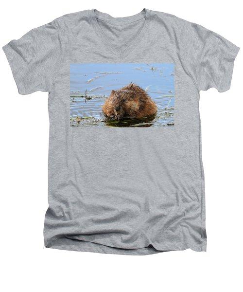 Beaver Portrait Men's V-Neck T-Shirt by Dan Sproul