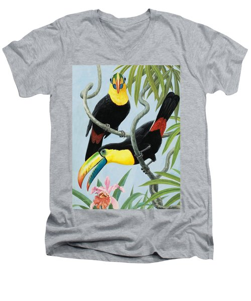 Big-beaked Birds Men's V-Neck T-Shirt by RB Davis