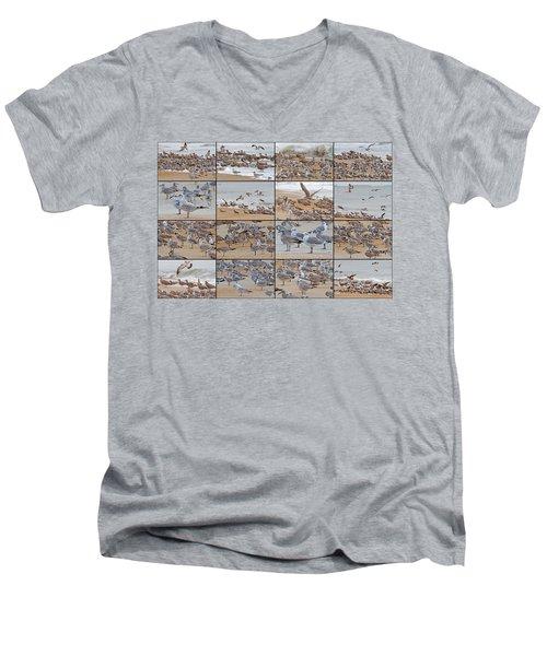 Birds Of Many Feathers Men's V-Neck T-Shirt by Betsy Knapp