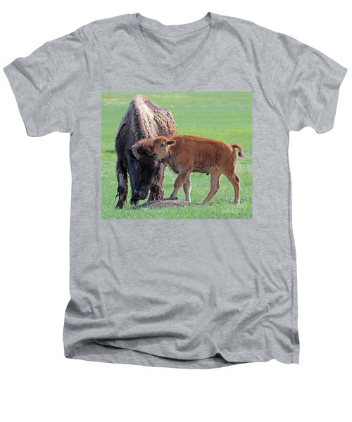 Men's V-Neck T-Shirt featuring the photograph Bison With Young Calf by Bill Gabbert