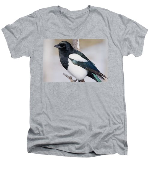 Black-billed Magpie Men's V-Neck T-Shirt by Eric Glaser