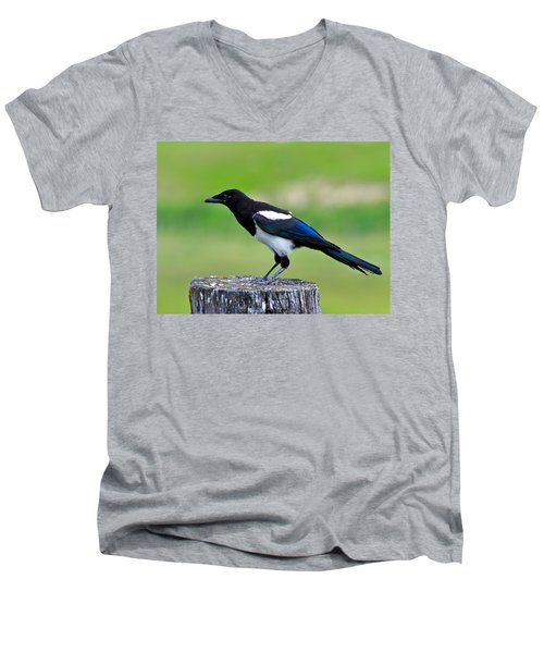 Black Billed Magpie Men's V-Neck T-Shirt by Karon Melillo DeVega
