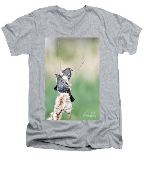 Blackbird Pair Men's V-Neck T-Shirt by Mike  Dawson
