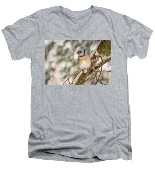 Blue Jay Men's V-Neck T-Shirt by Everet Regal