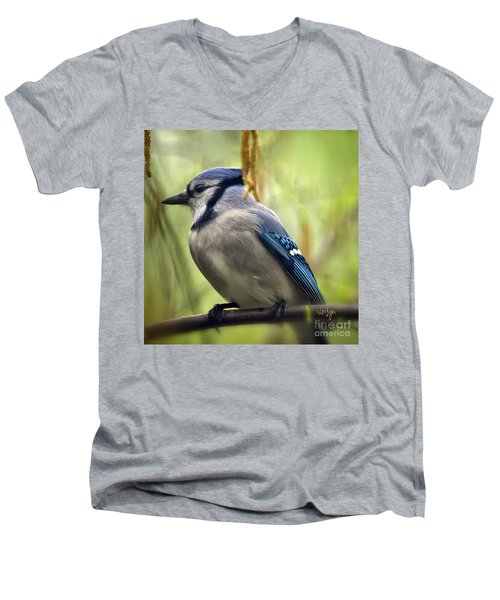 Blue Jay On A Misty Spring Day - Square Format Men's V-Neck T-Shirt by Lois Bryan