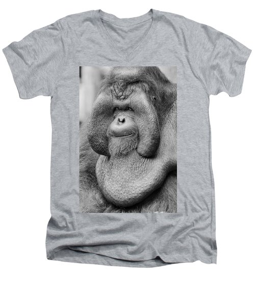 Bornean Orangutan IIi Men's V-Neck T-Shirt by Lourry Legarde