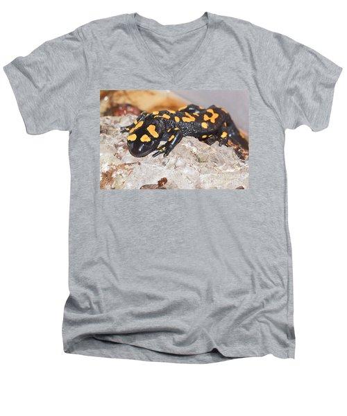 Fire Salamander Salamandra Salamandra Men's V-Neck T-Shirt by Shay Levy
