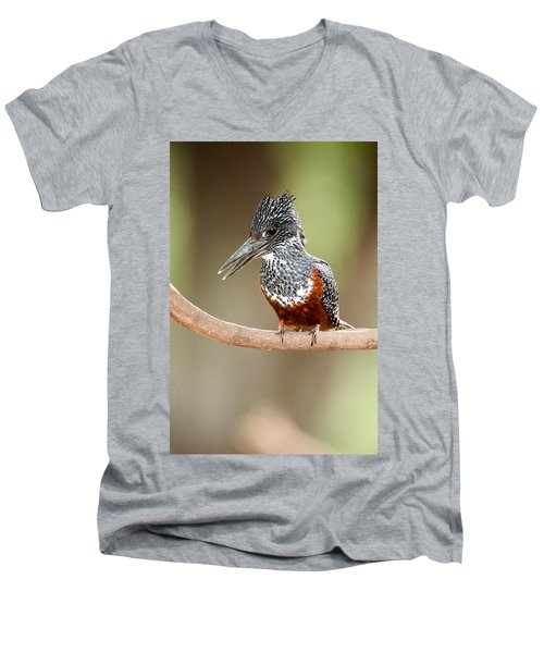Giant Kingfisher Megaceryle Maxima Men's V-Neck T-Shirt by Panoramic Images
