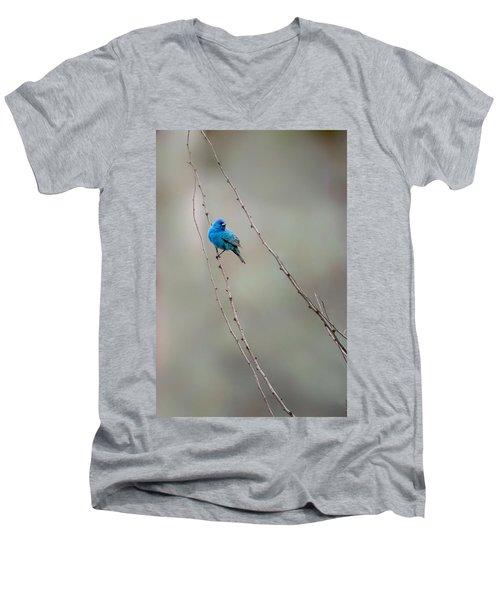 Indigo Bunting Men's V-Neck T-Shirt by Bill Wakeley