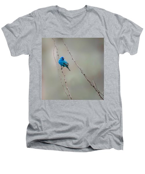 Indigo Bunting Square Men's V-Neck T-Shirt by Bill Wakeley