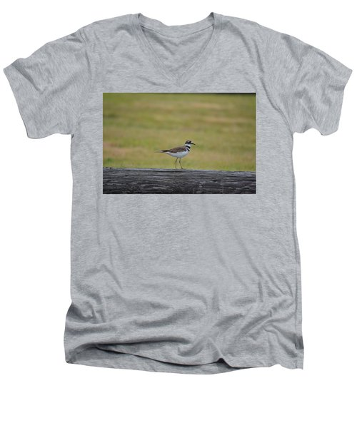 Killdeer Men's V-Neck T-Shirt by James Petersen