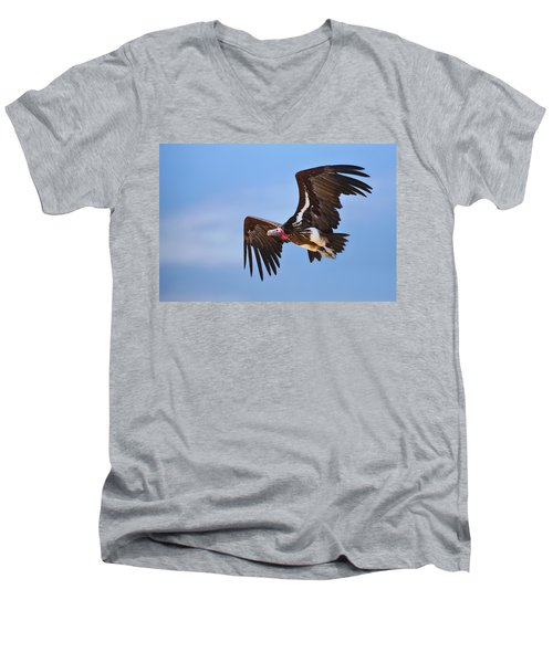 Lappetfaced Vulture Men's V-Neck T-Shirt by Johan Swanepoel