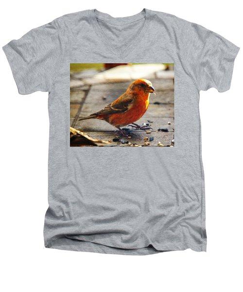 Look - I'm A Crossbill Men's V-Neck T-Shirt by Robert L Jackson